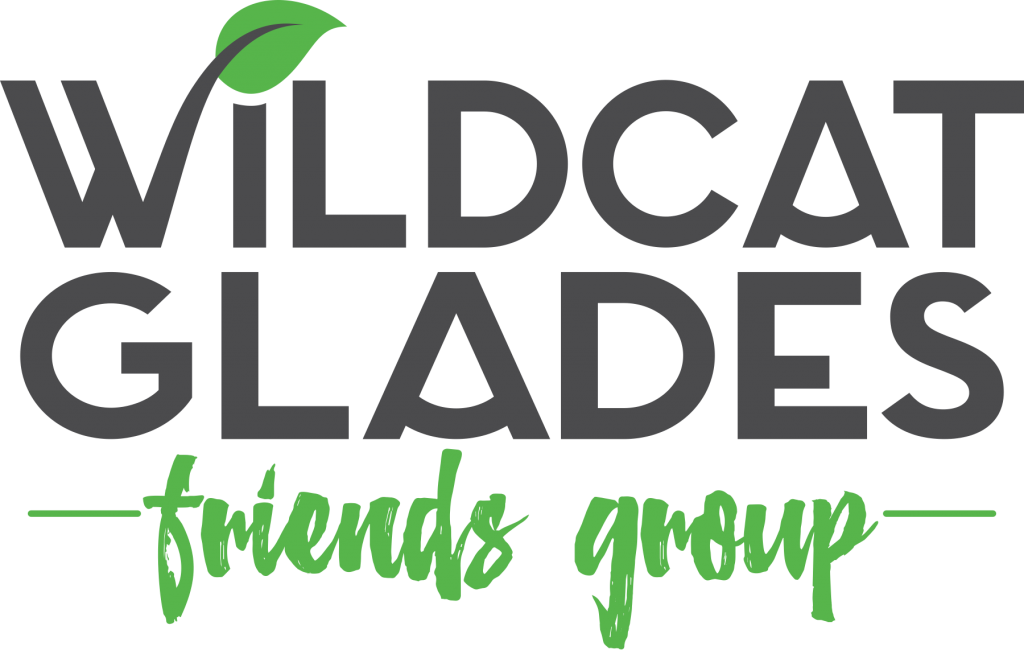 Wildcat Glades Friends Group Releases November Program List
